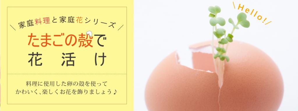 卵の殻が大変身!!