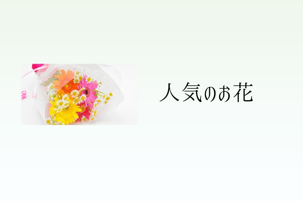 人気のお花